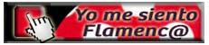 boton-amo-el-flamenco