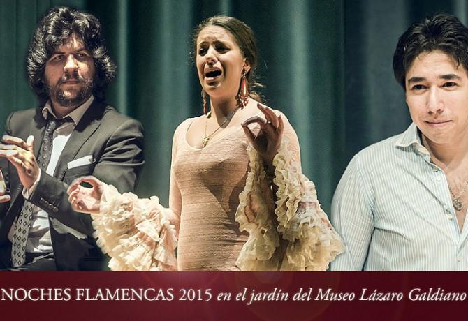 Noches Flamencas Madrid