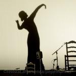 Sevilla y Cádiz llevan lo mejor de su flamenco a FITUR