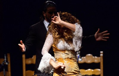 Máster en Investigación y Análisis del Flamenco
