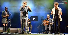 IV Encuentro Internacional de Guitarra Paco de Lucia 4