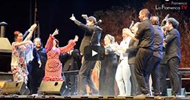Fiesta de La Buleria de Jerez video 2