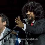 Andalucía acoge más de un centenar de actividades para celebrar el Día del Flamenco