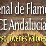 La VII Bienal Flamenca de la ONCE 2018