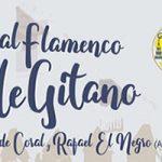 "Iº Festival Flamenco ""Valle Gitano"""