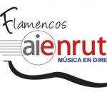 AIEnRUTa Flamencos busca a sus 4 artistas para 2019