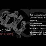 Flamenco en Red celebra su Xº edición