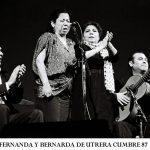 """""""Damas del Flamenco"""" la nueva exposición fotográfica de Paco Manzano"""