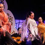 El Festival de Lo Ferro presenta su Iº Seminario de Arte Flamenco
