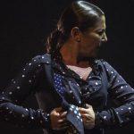 Flamenco viene del Norte