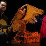 La XXIIº edición del Concurso Nacional de Arte Flamenco de Córdoba ya tiene ganadores