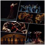 I Título de Experto Universitario en Artes del Espectáculo y Flamenco Contemporáneo