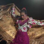 ElCentro Flamenco Fosforitoreanuda su actividad