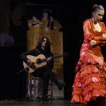 """El Concurso Talento Flamenco de Baile """"Manolo Soler"""" 2020 ya tiene a sus ganadores"""