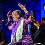 Caló Flamenco 2020 cierra su #EdiciónEspecial con un resultado más que favorable