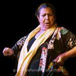 Conoce a los ganadores de la VIIº edición de los Premios Internacionales del Flamenco