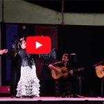IV Caló Flamenco a la Fiesta de la Bulería de Jerez