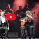 IV Caló Flamenco a la Fiesta de la Bulería de Jerez. Gema Moneo